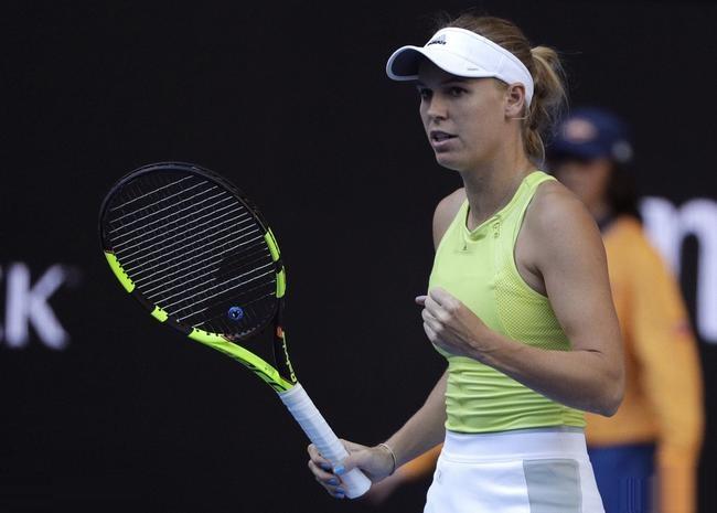 澳网沃兹携斯维托丽娜晋级 斯托瑟失赛点出局
